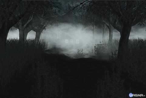 darkwoods_custom