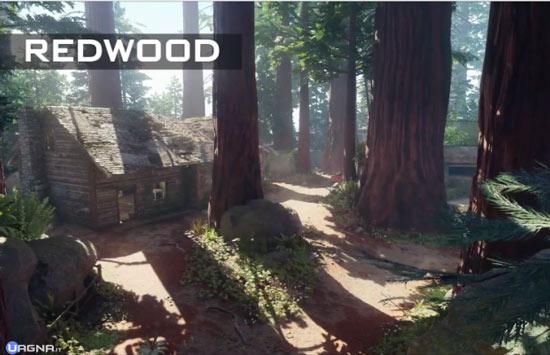 bo3redwood